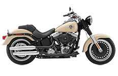 Harley Davidson Softail Saddlebags