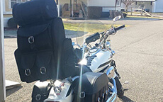 jim day trianon saddlebags and sissy bar Luggage