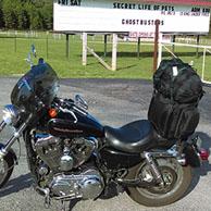 Daniel's '04 Harley Sportster Custom w/ Motorcycle Sissy Bar Bag