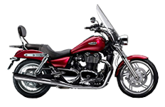 triumph-thunderbird-se-for-triumph-saddlebags-page-2.png